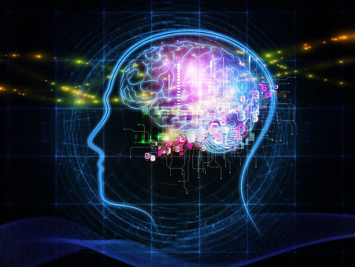Мозг и изучение иностранного языка