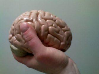 Активный мозг ч.1
