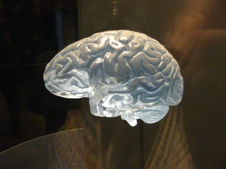 Активный мозг ч.2